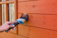Painting A Wooden Garden Shed With Waterproof Wood Preservative To Protect It From The Elements