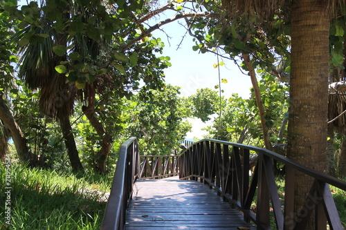 Canvas Prints Bridge Wooden road through the green jungle to the blue sea