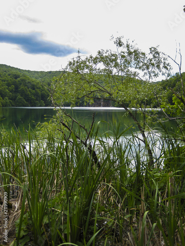 Foto op Aluminium Oceanië wonderful lake in the middle of the forest