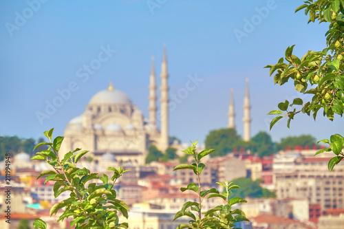 Plakat St Sophia meczet w Istanbuł, Turcja
