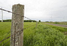 Barbed Wire Fence Along A Country Road With Green Grass Fields