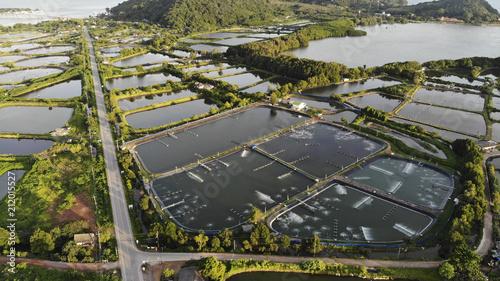 Photo Aerial view of shrimp farm and air purifier in Thailand
