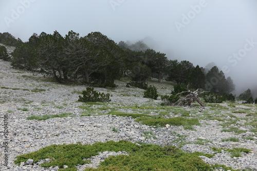 Foto op Plexiglas Alpinisme bergsteigen zum olymp,götterberg!