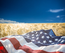 American Flag Lies On The Golden Wheat Field