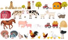 Farm Big Set Collection Vector...
