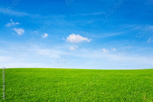 Foto op Aluminium Weide, Moeras Green meadow under blue sky