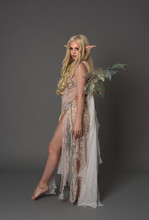 Full Length Portrait Blonde Girl Waring Fairy Costume, Standing Pose With Back To The Camera. Grey Studio Background.