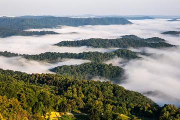 FototapetaMorning Fog and Mountains