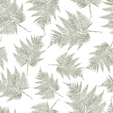 Seamless background of a the fern leaves - 212084161