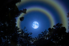 Moon Halo Double Rainbow Silhouette Grass Colorful Sky