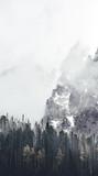 mglisty krajobraz w tatry - 212111538