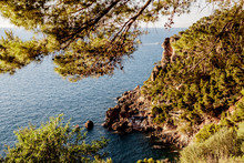 Rocky Sea Shore With Cliffs And Trees