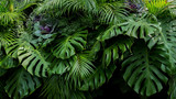Fototapeta Fototapety do łazienki - Green tropical leaves of Monstera, fern, and palm fronds the rainforest foliage plant bush floral arrangement on dark background, natural leaf texture nature background.