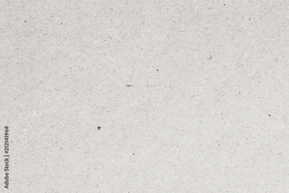 Fototapety, obrazy: Light paper texture cardboard background close-up. Grunge old paper surface texture with small inclusions of cellulose