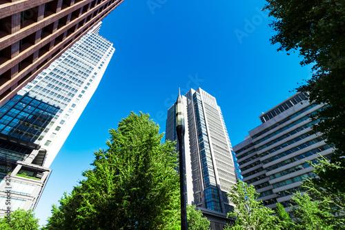 (東京都ー都市風景)大手町広場から見る丸の内ビル群1 Wallpaper Mural