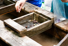Gemstone Panning With A Sluice Box. Sifting For Stones And Fossils At The Mining Sluice. Kids Education.