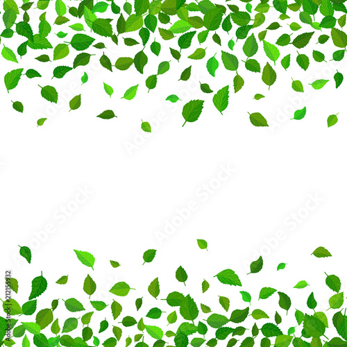 Seamless vector floral pattern background. Green leaves backdrop. Hibiscus leaves realistic vector repeatable border design. Wall mural
