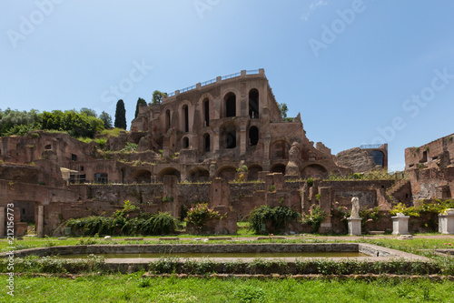 Poster Oude gebouw Ruins of Palatine hill palace in Rome, Italy (Circus Maximus)
