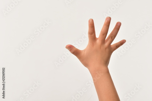 Fotografia  子供の手の甲