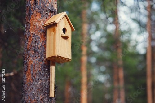 Canvas Print Birdhouse is attached to tree in forest. Concept spring