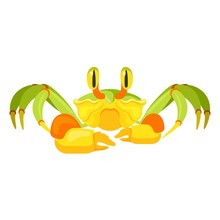 Fiddler Crab With Five Pair Of...