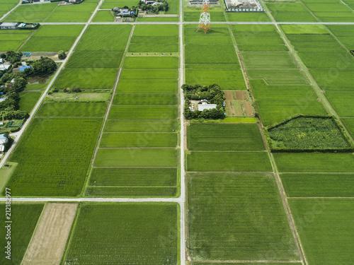 田んぼに囲まれた自然が溢れる農家の家
