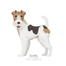 Fox Terrier Isolated On White ...