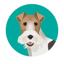 Fox Terrier In Color Circle Colorful Vector Illustration
