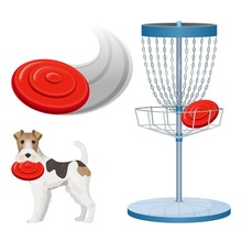 Frisbee Golf Game Color Vector...