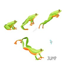 Frog Jumping By Sequence Carto...