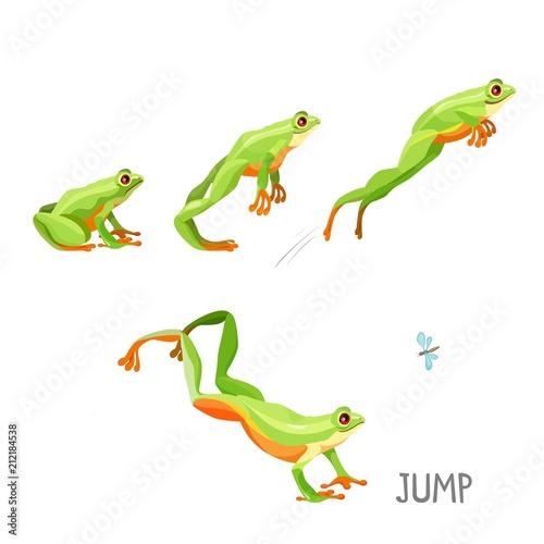 Fotografie, Obraz  Frog jumping by sequence cartoon vector illustration