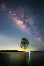 The Beautiful Milky Way Above A Tree Standing In The Water. The Beautiful Stars In Thailand.