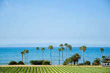 Amazing View By The Ocean In Sunny California