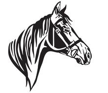 Decorative Portrait Of Horse In Profile 2 Vector Illustration