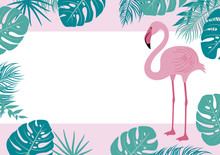 Summer Banner Of Flamingo And Tropical Leaves Vector Illustration
