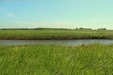 Nationalpark Wattenmeer In Fri...