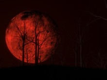 Blood Moon Scene With Dark Woo...