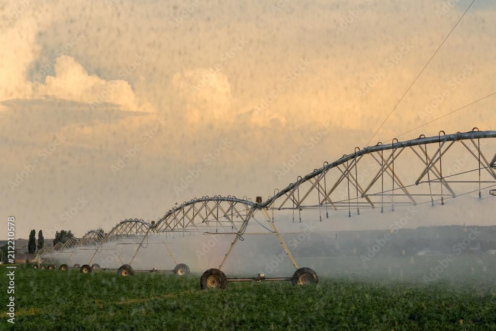 Fotografia field irrigation system / field care it is very