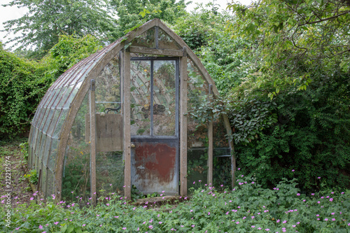 Cuadros en Lienzo Old disused decaying greenhouse
