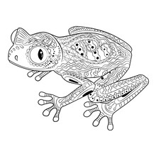 Coloring Page With Frog In Zentangle Style.
