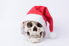 Skull With Red Christmas Hat O...