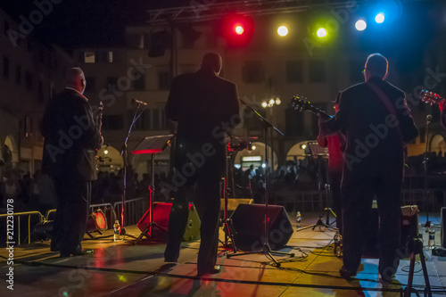 Fotografie, Obraz  Night view of an outdoor concert from the back of the stage
