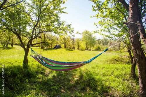 Obraz na plátně hammock hanging between trees on green field at sunny day