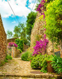 Fototapeta Na drzwi - Idyllic view of beautiful flowers street in old village of Fornalutx on Majorca, Spain