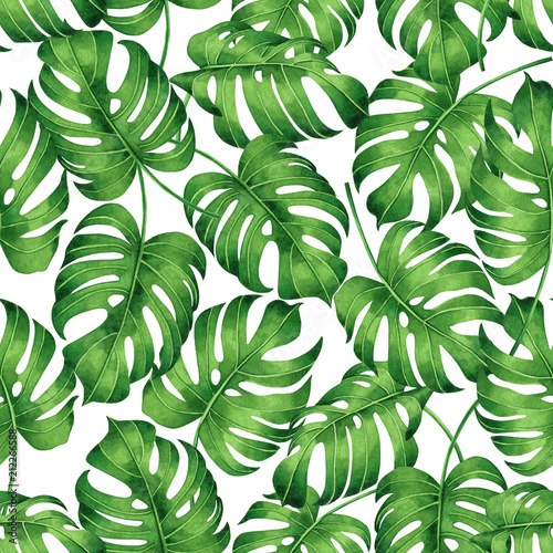 Watercolor Green Plants Monstera Nature Posters And Prints: Watercolor Painting Tropical Monstera,palm Leaf,green