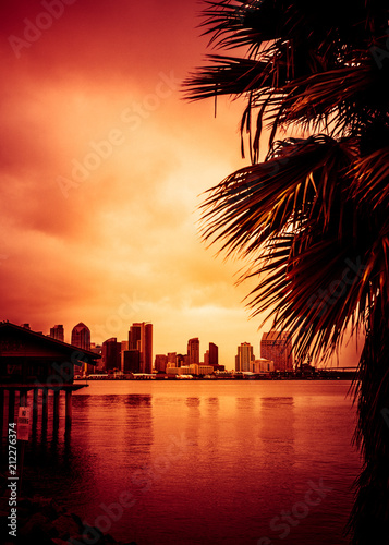 Poster Lieux connus d Amérique Beautiful sunset over San Diego skyline with bay and palm trees