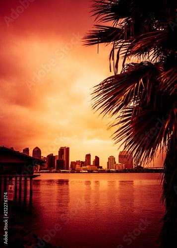 Foto op Aluminium Amerikaanse Plekken Beautiful sunset over San Diego skyline with bay and palm trees
