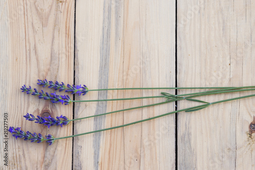 Lawenda na drewnianym tle - 212277503