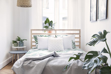 Modern Scandinavian Sunny Bedroom With Plants , Floral Pattern Bedding And Pilows. Space With White Walls And Brown Wooden Parquet.