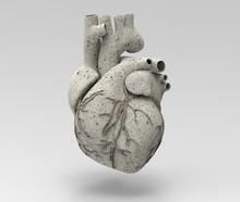 3D Limestone Human Heart  Illu...